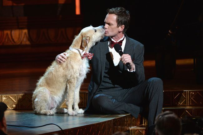 Neil Patrick Harris gets a kiss from Sandy, the dog from the Broadway show Annie!