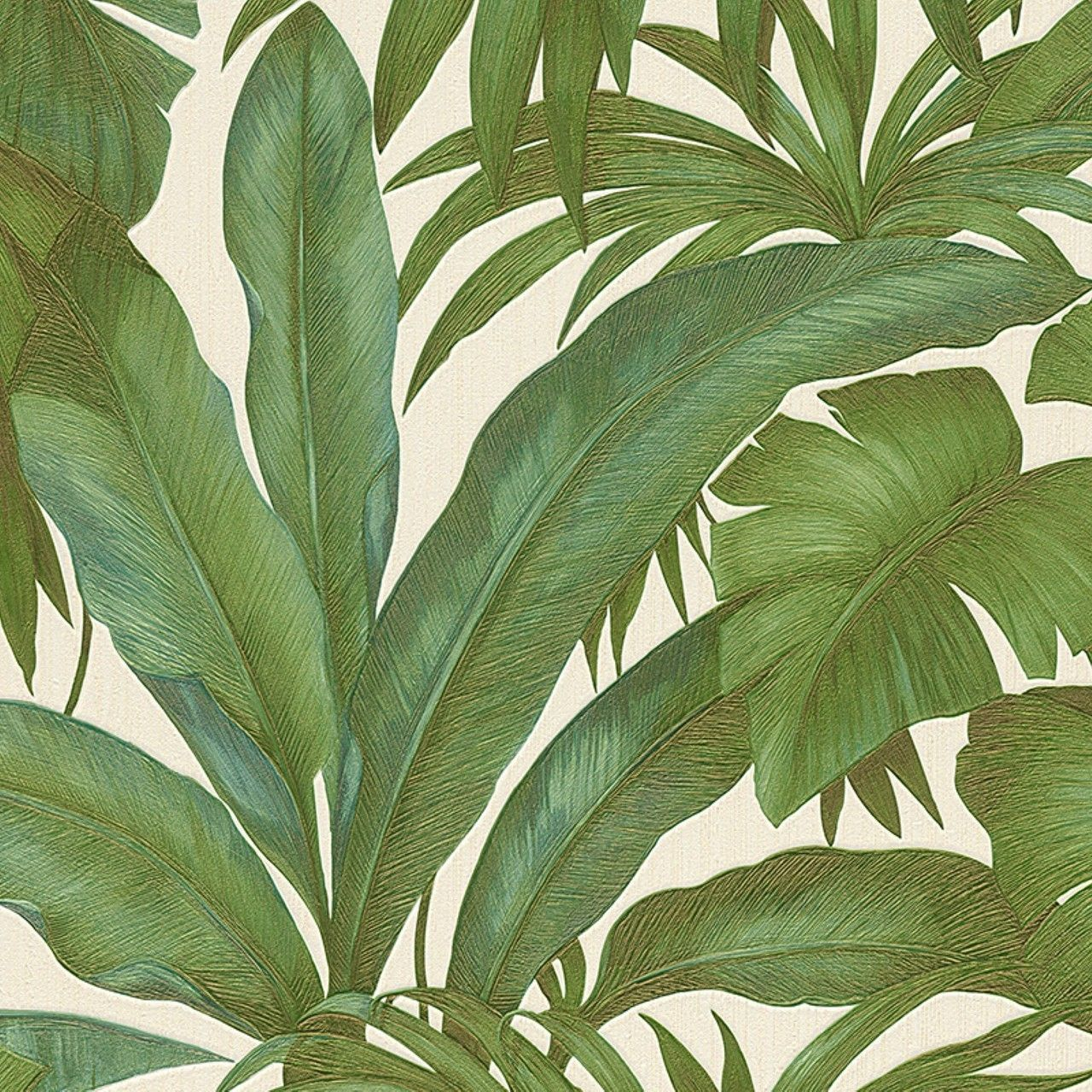 Versace Leaf Green Wallpaper | AS Creation Wallpaper | Lancashire Wallpaper  U0026 Paint