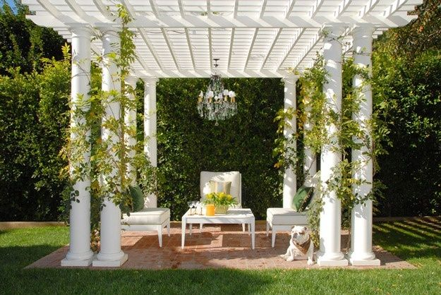 Creepers As Pergola Creepers As White Pergola White Pergola Outdoor Living Pergola
