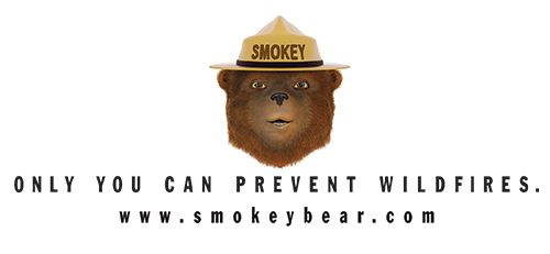 only you can prevent wildfires photo of smokey the bear