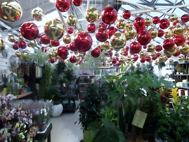 Welcome To My Local Christmas Garden Centre By Duffy Christmas Garden Garden Center Displays Garden Center