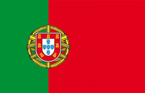 Drapeau portugal drapeaux des pays pinterest - Drapeau portugais a imprimer ...