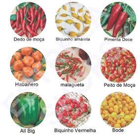 Kit 9 Variedades Sementes De Pimenta Especiais Raras