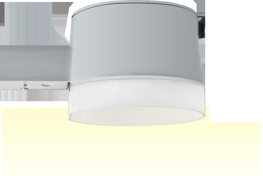 RAB LED Barn Light