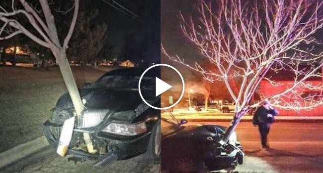 Polícia Apanha Mulher a Conduzir Com Árvore Presa Na Frente Do Carro http://www.shocktv.biz/policia-apanha-mulher-conduzir-com-arvore-presa-na-frente-carro/