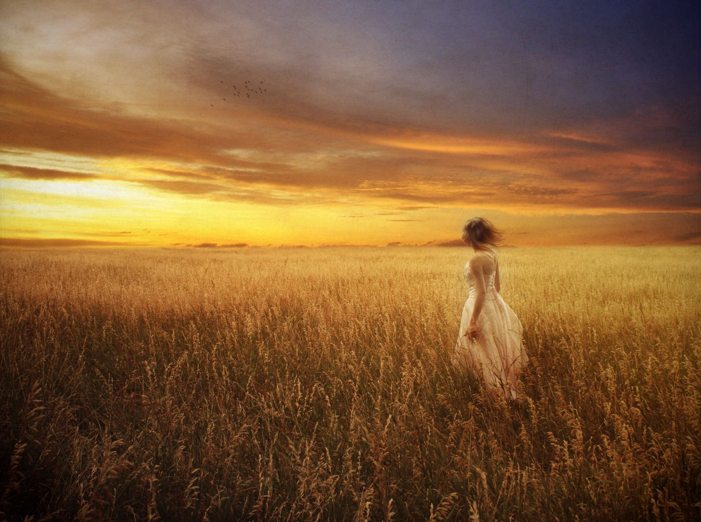 Why is the idea of standing in the middle of a huge wheat field so awe inspiring?