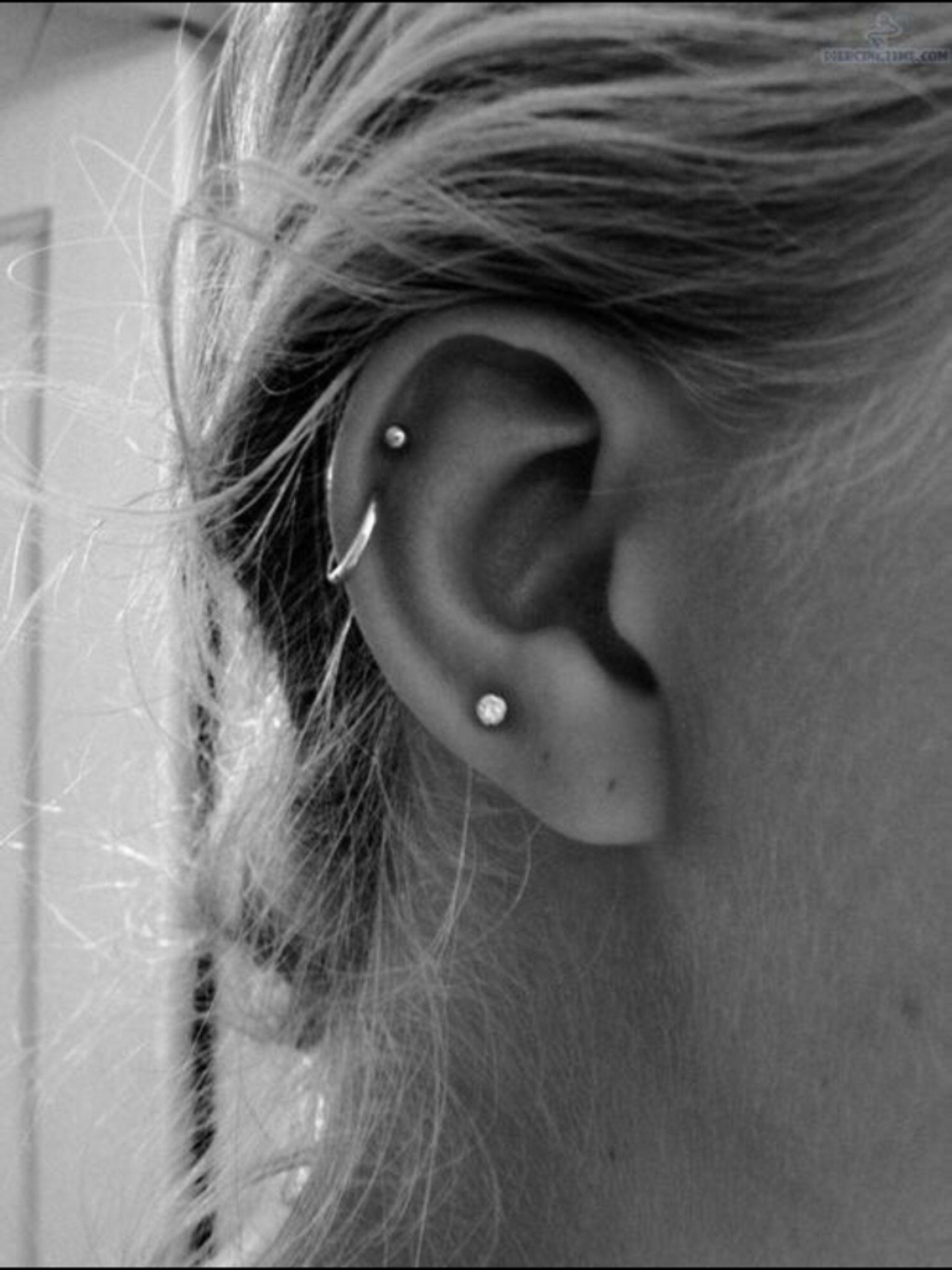 Septum piercing vs nose piercing  share Image  Tattoos u Piercings  Pinterest  Piercings Piercing