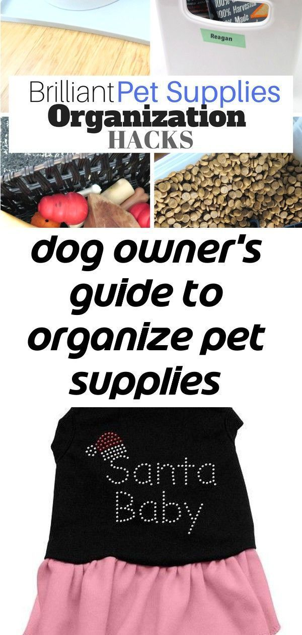 Dog owners guide to organize pet supplies throughout your home 1 Keep your