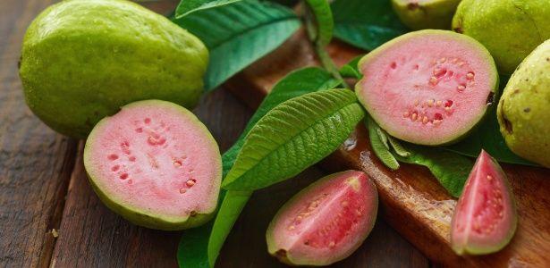Resultado de imagem para Gosta de goiaba? Conheça os benefícios da fruta e de sua folha para a sua saúde