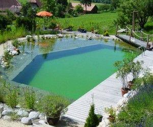 Piscine naturelle : coût d\'entretien, aspect écologique et sécurité ...