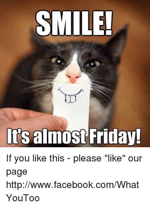 Hold On Its Almost Friday Meme
