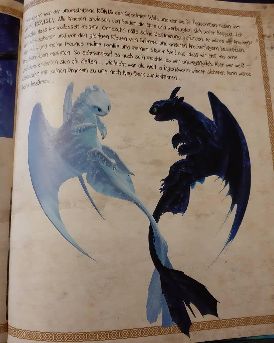 Mogt Ihr Lieber Ohnezahn Oder Tagschatten Ich Mag Beide Is Your Favourite Dragon Toothless Or T Disney Zeichnungen Zeichnung Ohnezahn Zeichnung
