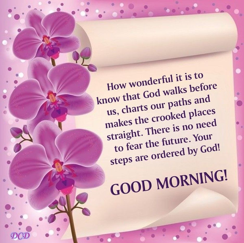 Good morning your steps are ordered by god good morning