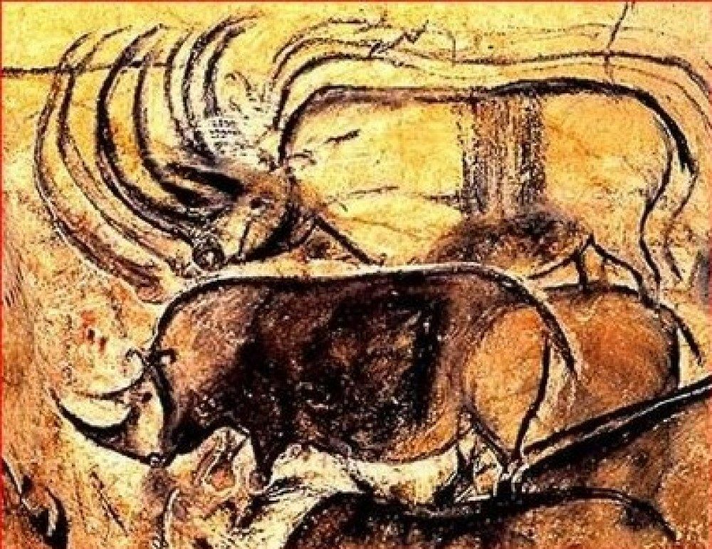 Ancient Artists And The Wonders Of Chauvet Cave Rcscience Cave Paintings Chauvet Cave Prehistoric Cave Paintings