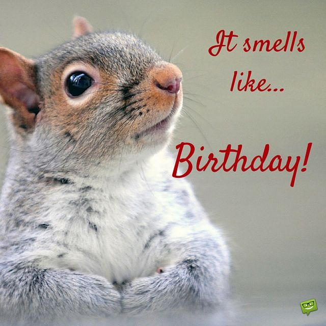 300 Great Happy Birthday Images For Free Download Sharing Happy Birthday Squirrel Happy Birthday Images Birthday Greetings For Facebook