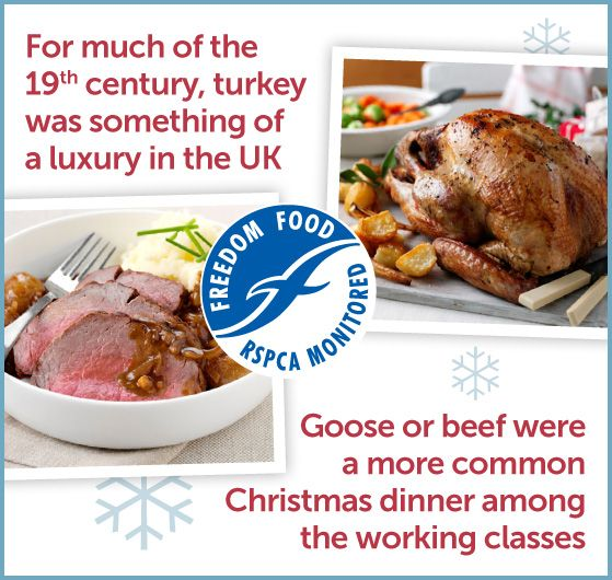 Only The Rich Ate Turkey In The Uk For Much Of The Th Century What Did They Eat At Christmas Instead Goose And Beef Were A More Common Christmas Dinner