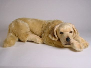 Walden Golden Retriever Dogs Golden Retriever Plush Stuffed