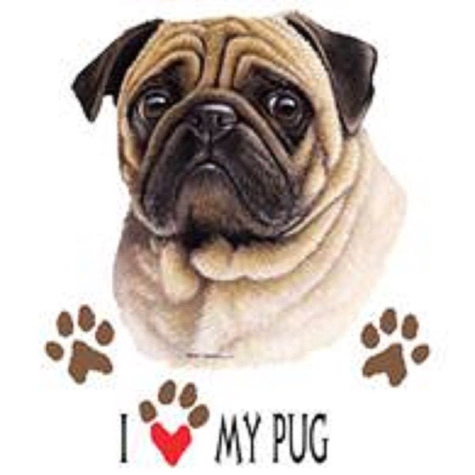 Details About Pug Love T Shirt Pick Your Size Youth Medium To 6 X