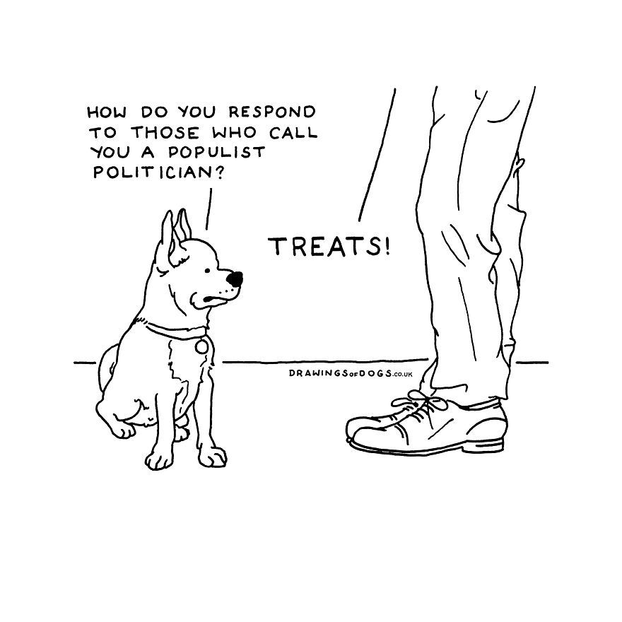 After My Anxiety Forced Me To Drop Out Of A Philosophy PhD I Started Drawing Dog Comics