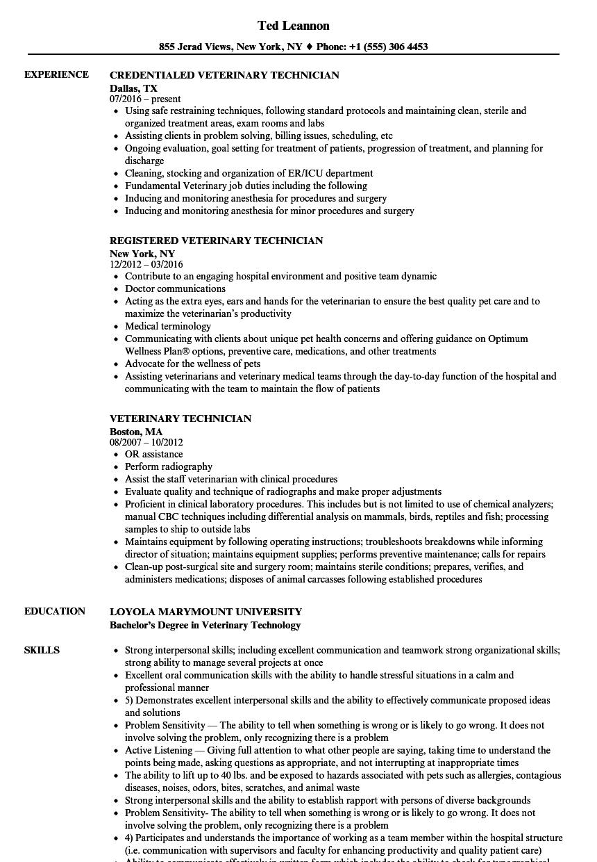 Resume Examples Vet Tech Resume examples, Sample resume