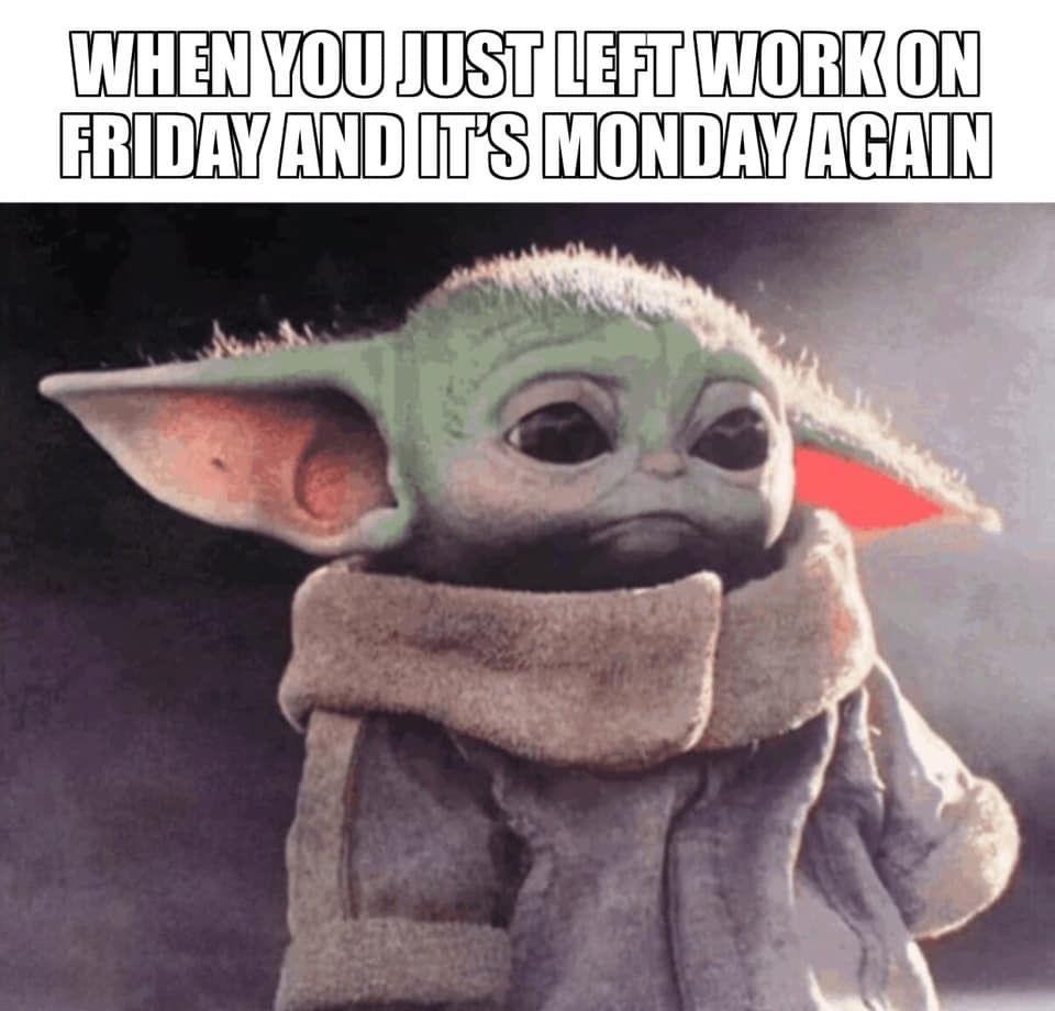 Pin By Priscilla Mercer On Mondays Mornings And Bad Days Yoda Meme Yoda Funny Star Wars Humor
