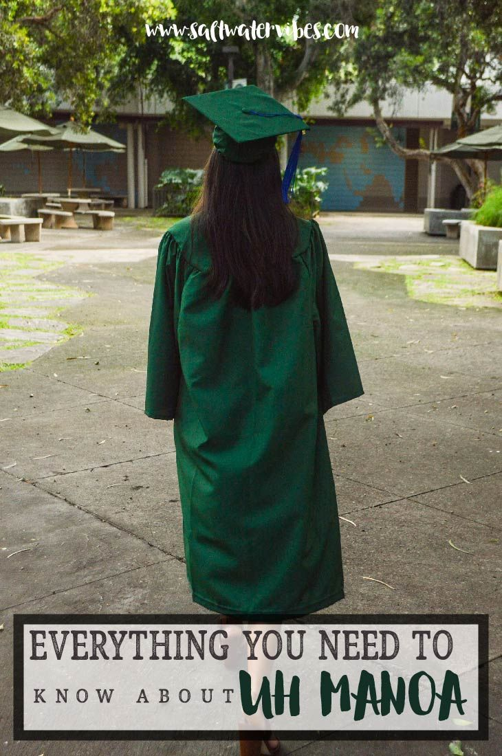 Everything You Need To Know About Uh Manoa Manoa University Of Hawaii Oahu Travel
