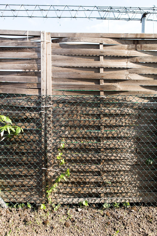 Sichtschutz Ideen Fur Den Garten Sichtschutz Ideen