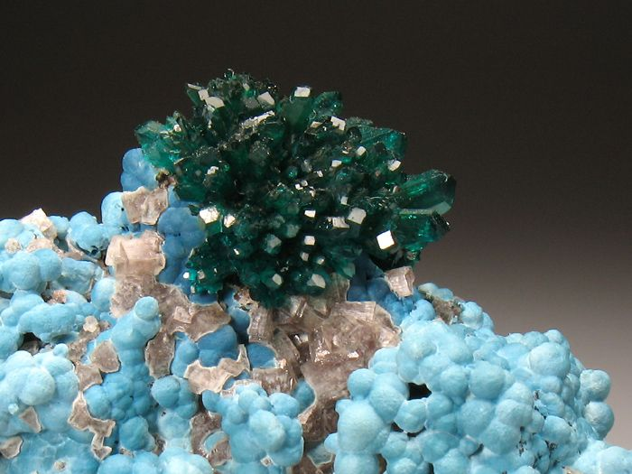 DIOPTASE and PLANCHEITE Minerals from Kaokoveld, Kunene Region, Namibia, Africa at Crystal Classics