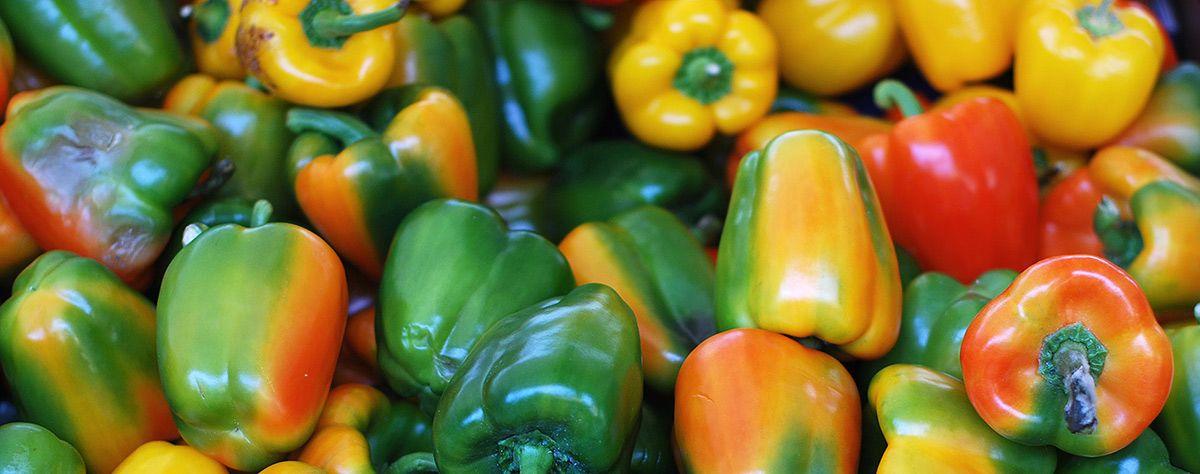 Wozu wir die Wirkstoffe benötigen, in welchen Lebensmitteln sie enthalten sind - und wie sich ein Mangel bemerkbar macht