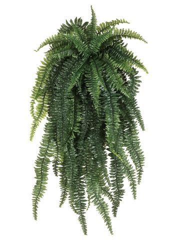 Romance Of Nature Into Your Wedding With This Artificial Weeping Boston Fern Hanging Bush From Afl Full And Lush For Diy Baskets