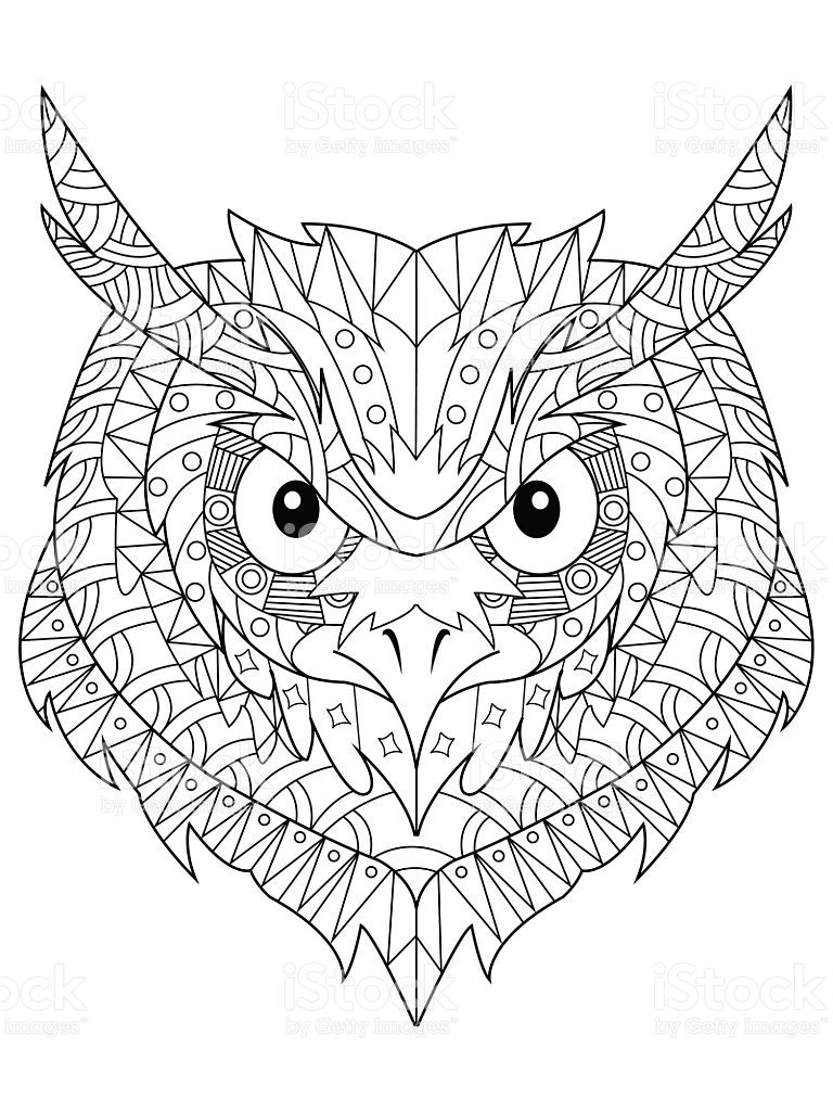 Owl Head Coloring Book For Adults Vector Illustration Anti Stress Vektorzeichnung