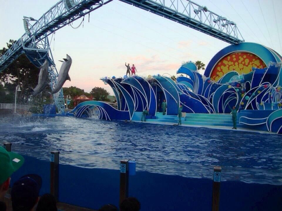 What S Seaworld San Diego Like Right Now Let S Dive Into The Details Seaworld San Diego Sea World San Diego Sea World