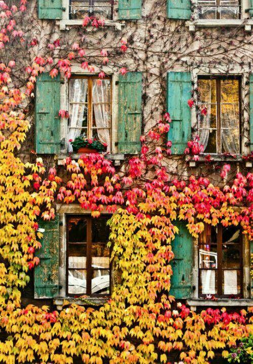 Warm Autumn Welcome
