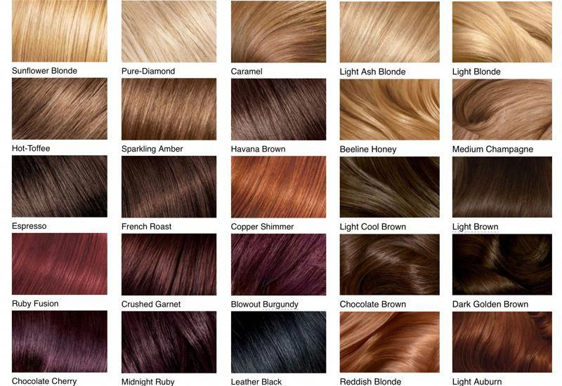 Take A Look At These Charts To Find The Exact Hair Color You Re Wanting Vernacular Shades Of Red Hair Hair Color Brown Chestnut Hair Color Chart