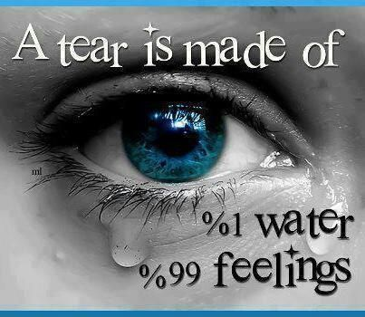 Health Care Quotes Sayings Crying Eyes Eyes Wallpaper Things Under A Microscope