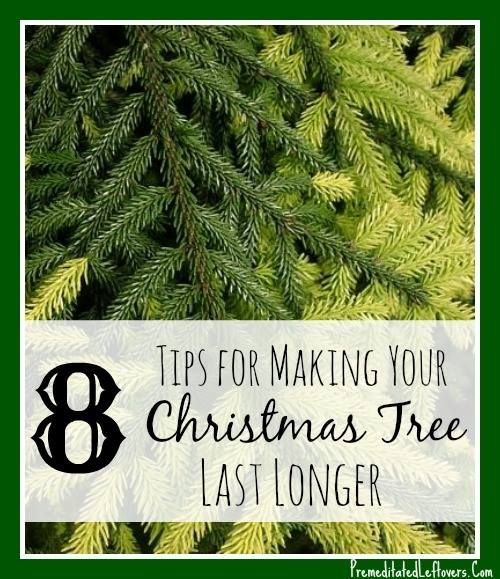 8 Ways to Make Your Christmas Tree Last Longer - Tips for ...