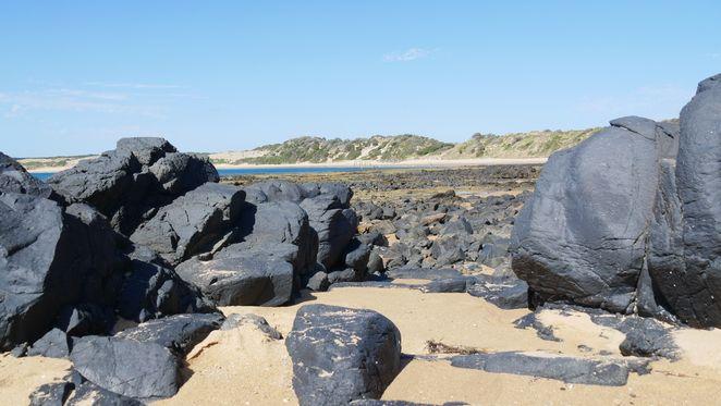 cowrie beach, cowrie beach phillip island, phillip island, best beaches phillip island