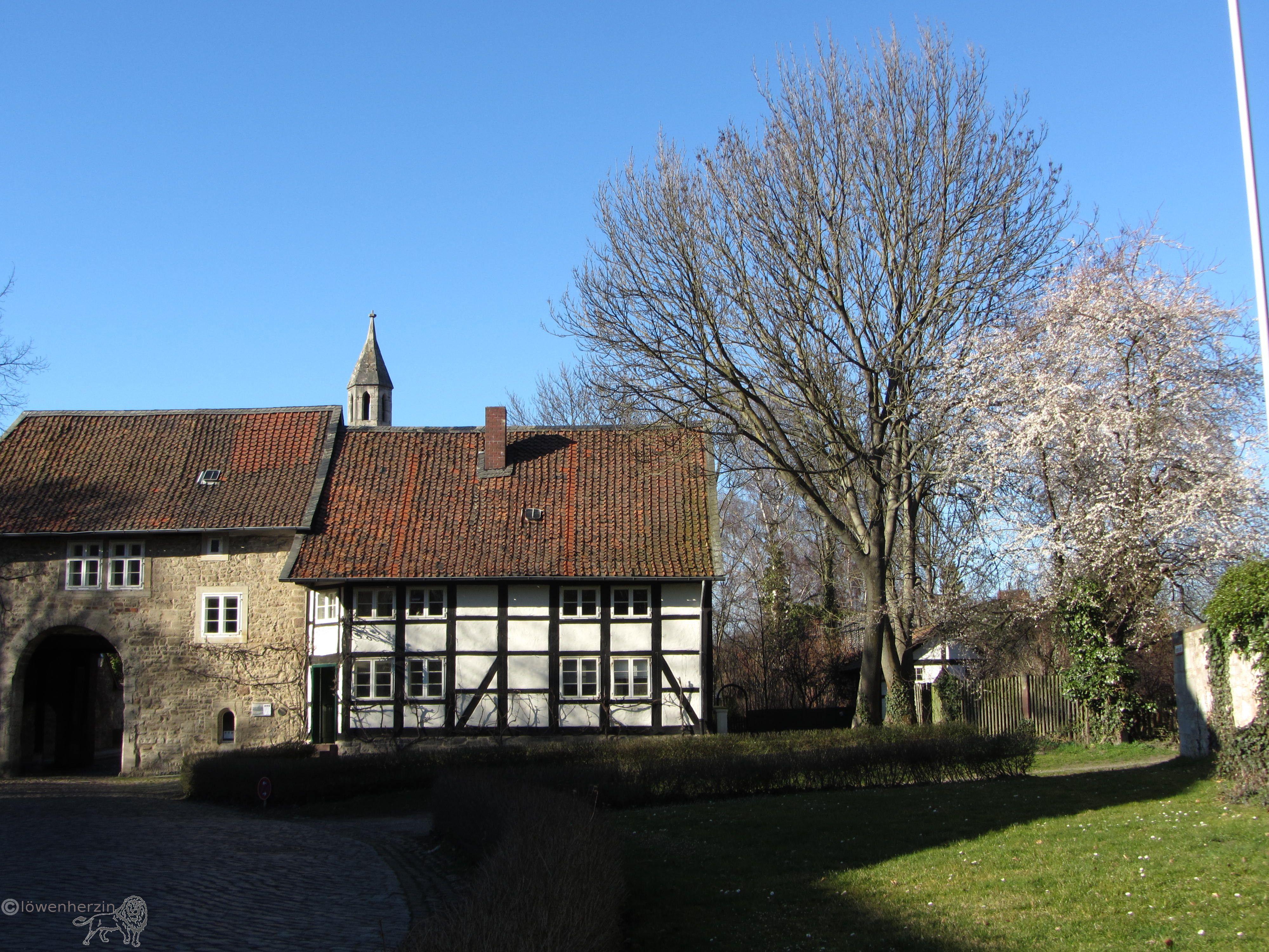 Frühling in Riddagshausen Braunschweig