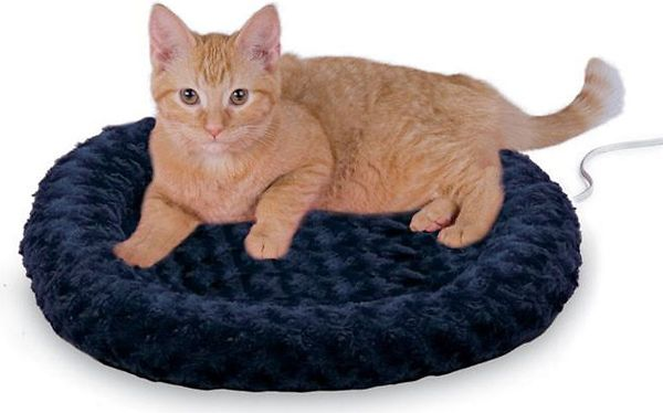 K & H Thermo-Kitty Fashion Splash Cat Bed is Warming and Energy-Efficient