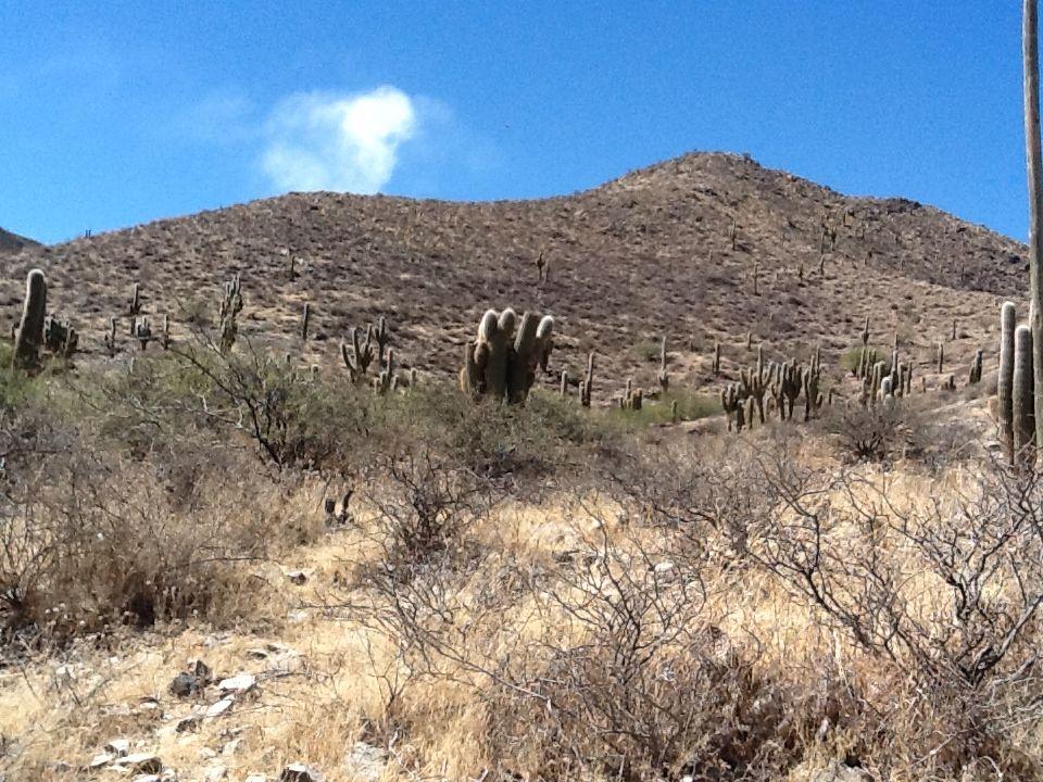 Salta. Cachi. Ruinas Las Pailas