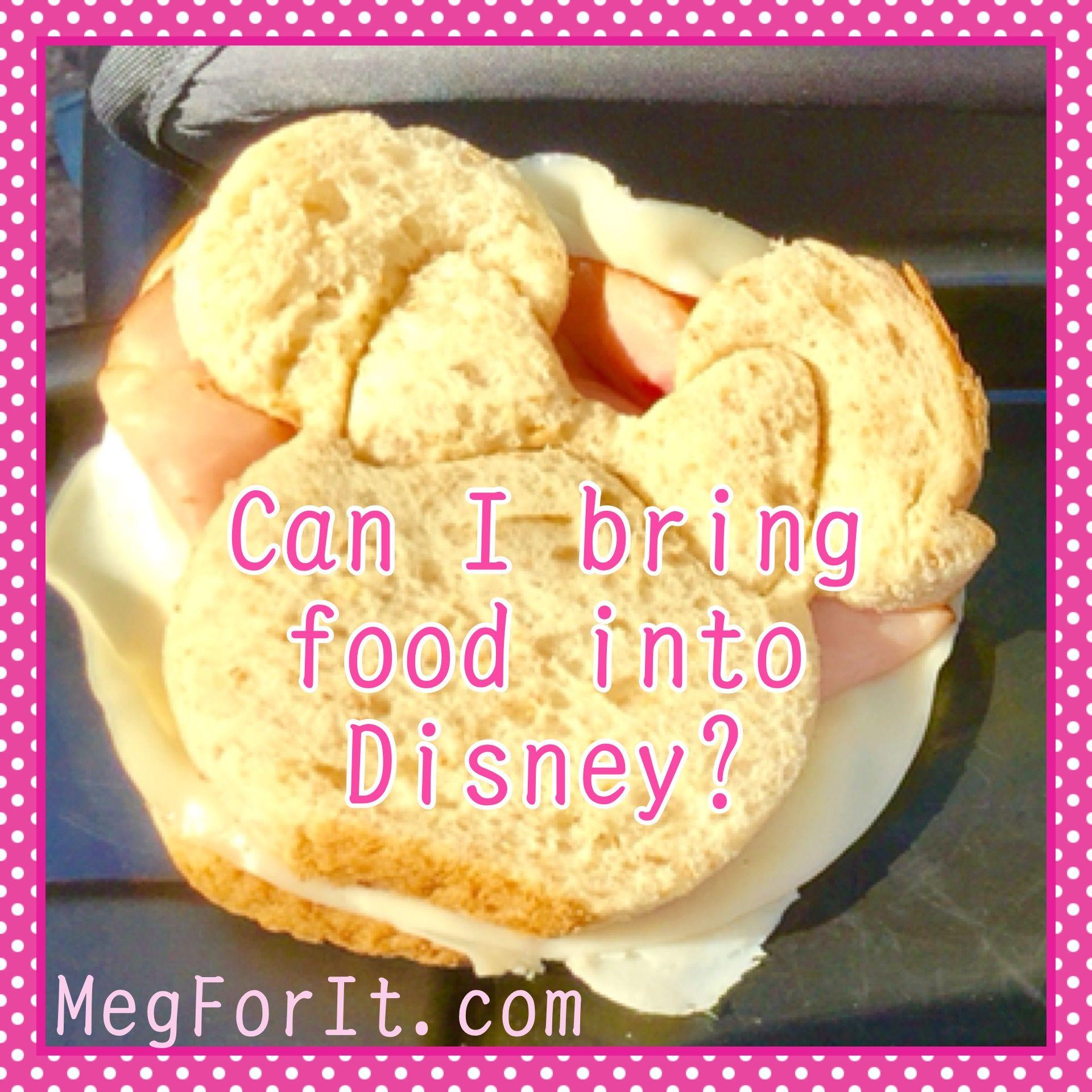 Can You Take Food Into Disneyland California
