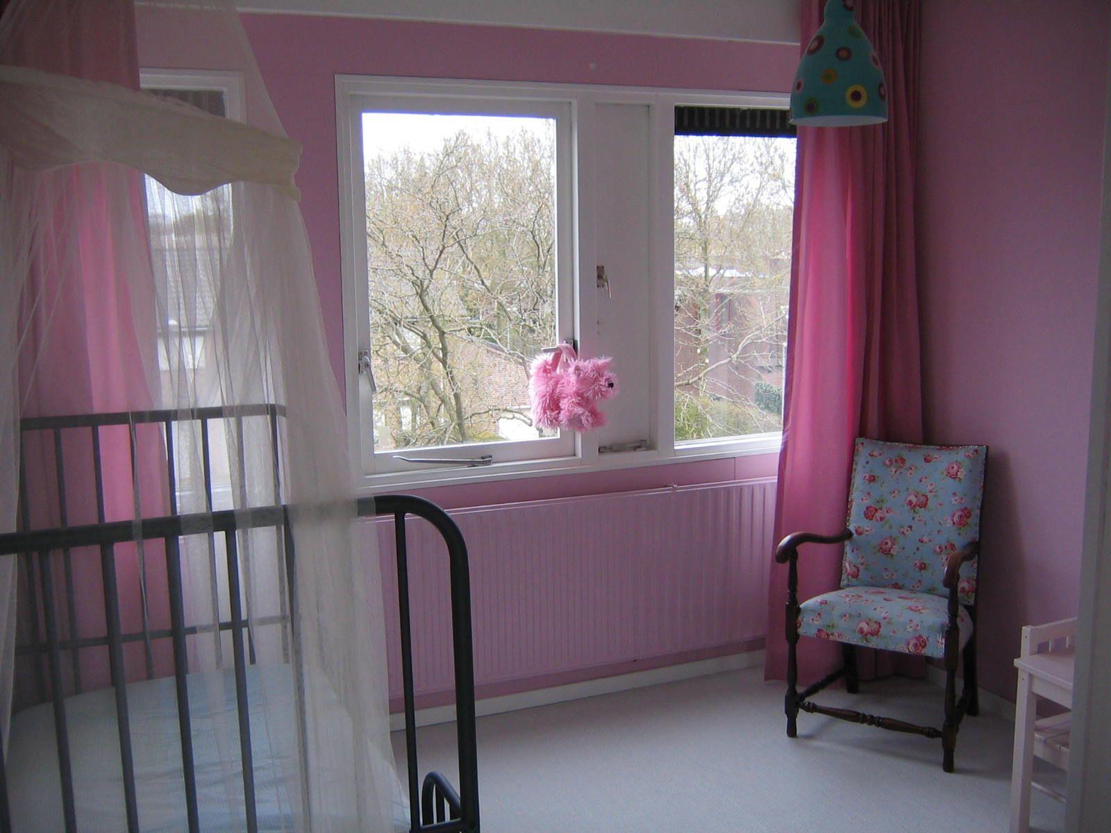 Ideeen Roze Kinderkamer : Babykamer grijs roze u cartoonbox