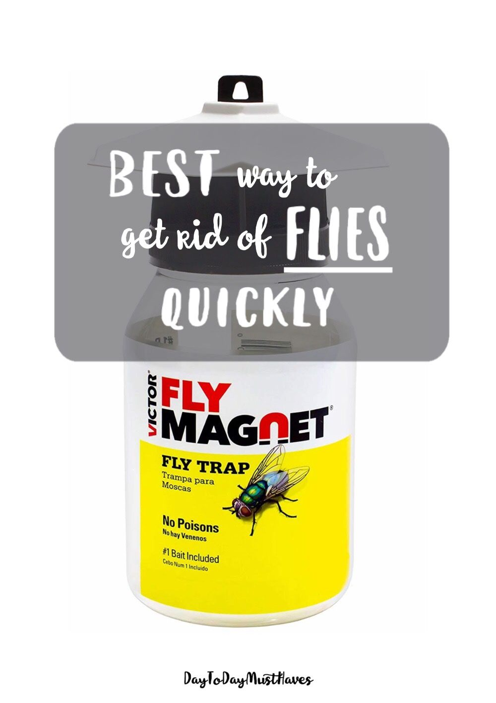 How do I get rid of all these flies? That's what I was ...