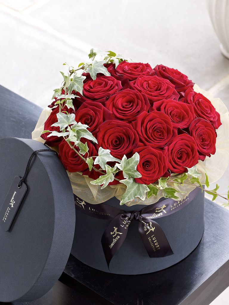 Collection Christmas Flowers · Luxury Grand Prix Rose