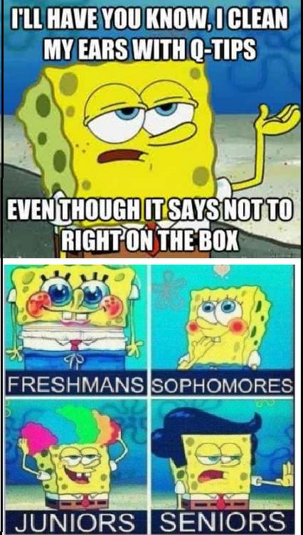 Spongebob Funny Memes Clean Google Search Spongebob Funny Spongebob Memes Funny Memes