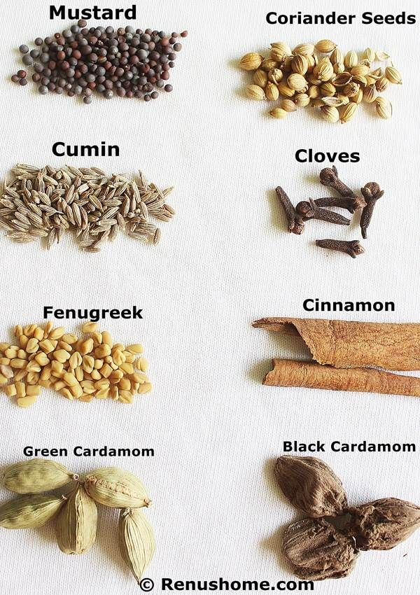 Indian spices glossary of Indian spices in english