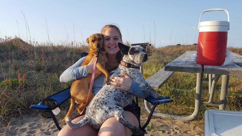 Photo of Ultimate Dog Camping Gear List PLUS Printable Checklist – Life With Mutts