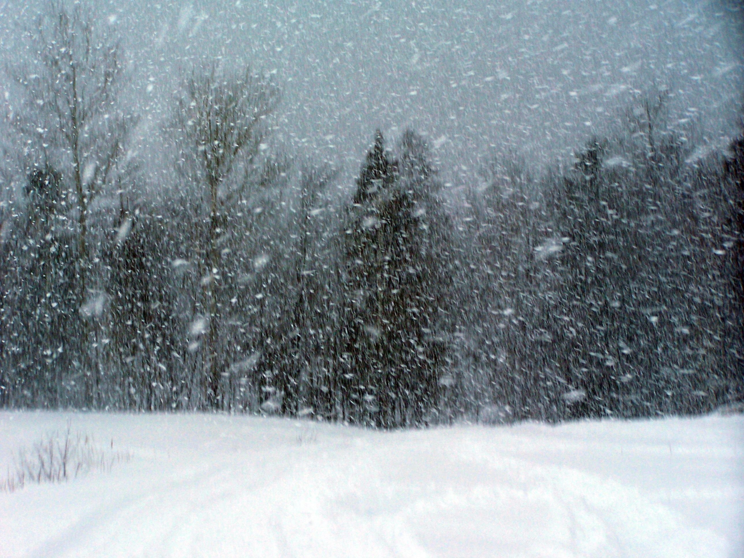Snowstorm In A Glass | Winter poems, Snow storm, Painting snow