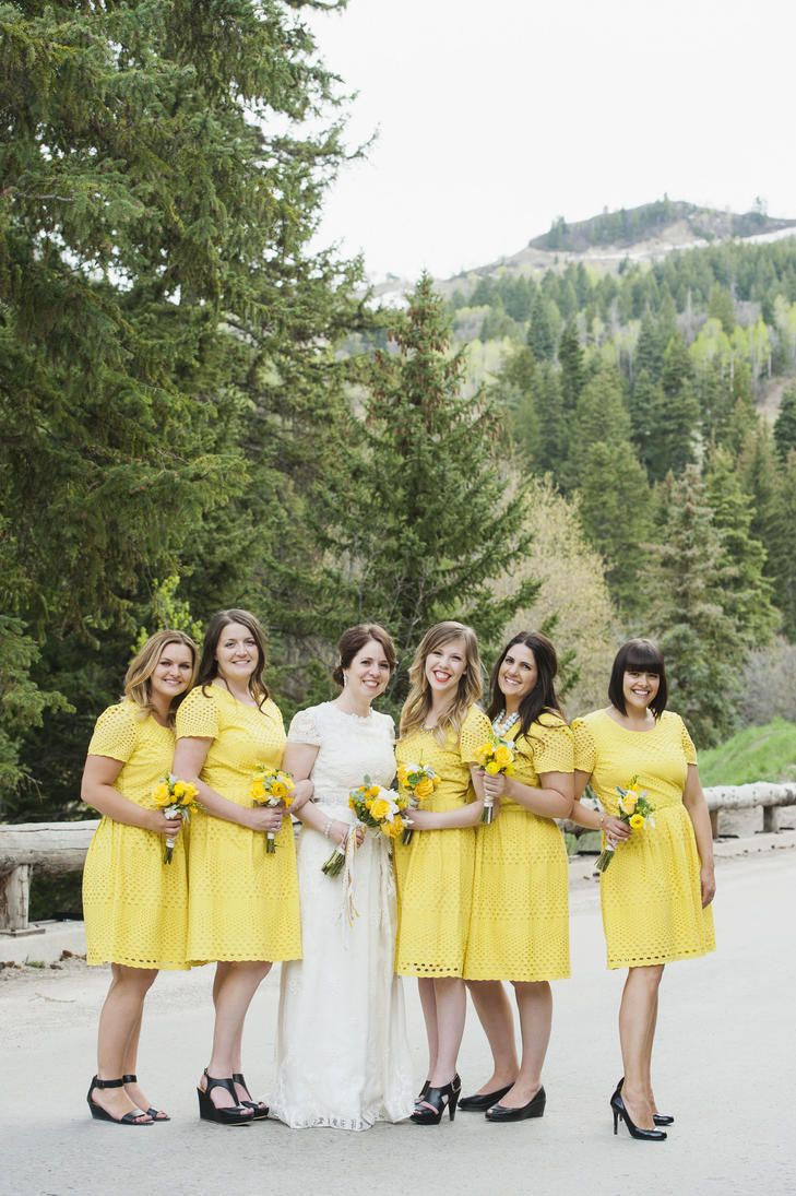 Short sleeve knee length dresses from boden bridesmaid dresses find this pin and more on bridesmaid dresses ombrellifo Choice Image