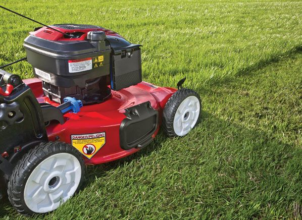 Best And Worst Walk Behind Lawn Mowers Lawn Problems Walk Behind